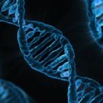 Testul DNA Tribes Genetic Ancestry Analysis