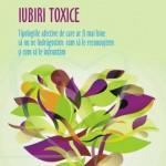 """Recomandare carte: """"Iubiri toxice – Tipologiile afective de care ar fi mai bine sa nu ne indragostim: cum sa le recunoastem si cum sa le infruntam"""", Walter Riso"""